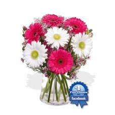 7 Gerbera Vase Bouquet